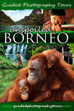 Guided Photography Tour - Unspoiled Borneo