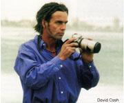 David Cash